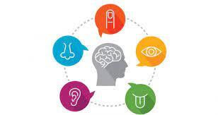 experiencias-sensoriales-marketing-emocional-arquitectos
